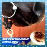 Horse love coffee too